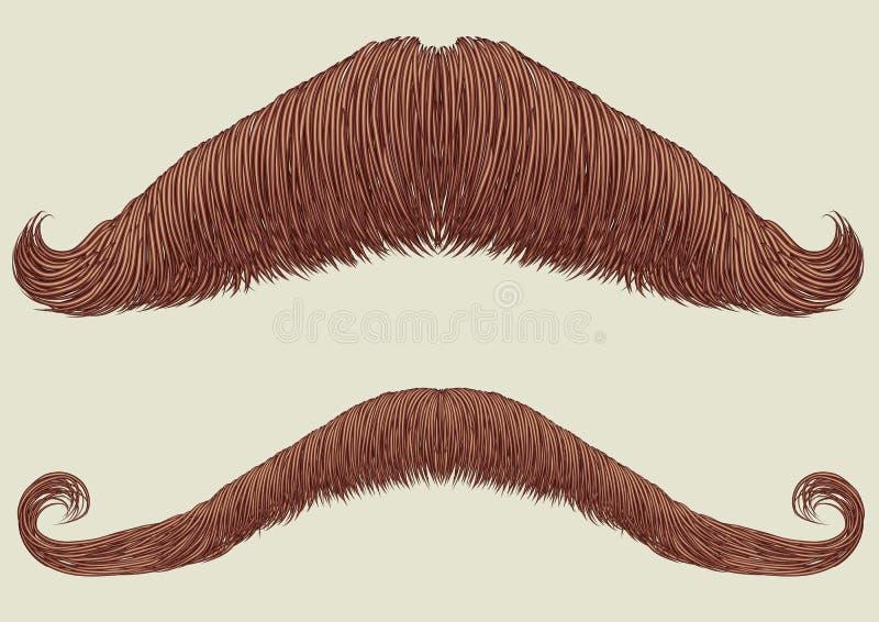 mężczyzna wąsy ilustracji