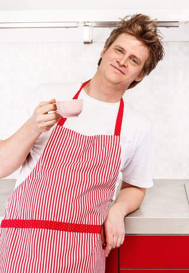 Download Mężczyzna w fartuchu obraz stock. Obraz złożonej z chef - 28969673