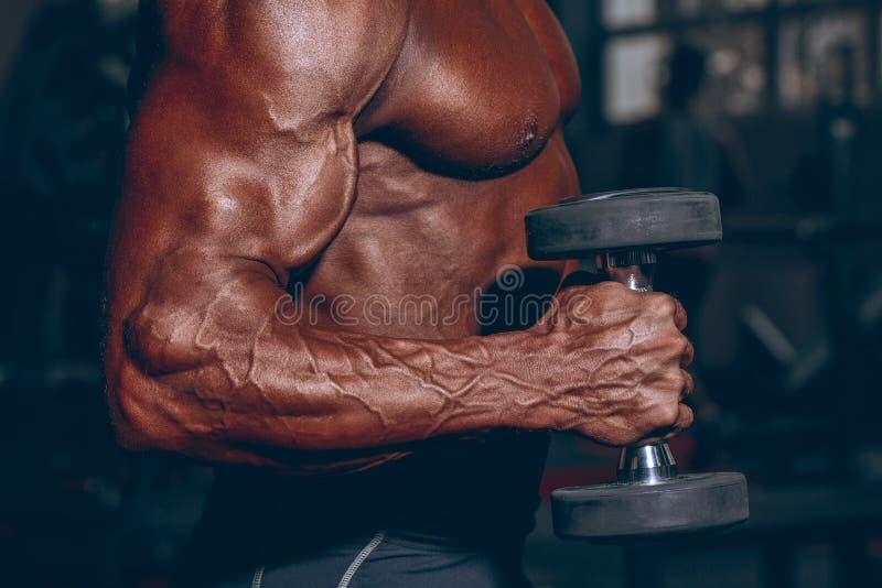 Mężczyzna w gym Mięśniowy bodybuilder facet robi ćwiczeniom z dumbbell Silna osoba z Spiętą męską ręką z żyłami zdjęcie stock