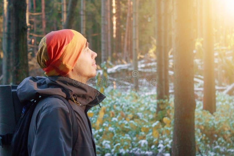 Mężczyzna w lesie obrazy royalty free
