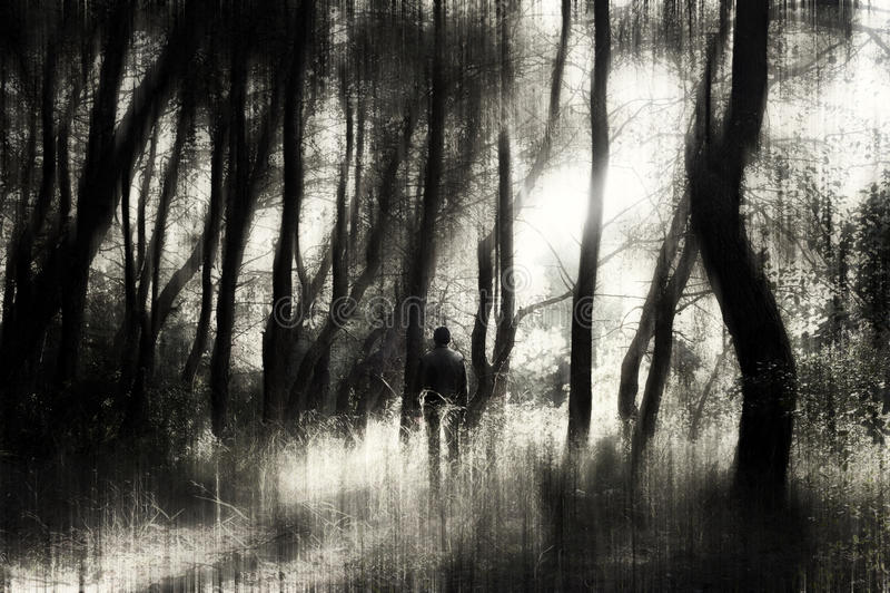 Mężczyzna w lesie obraz stock