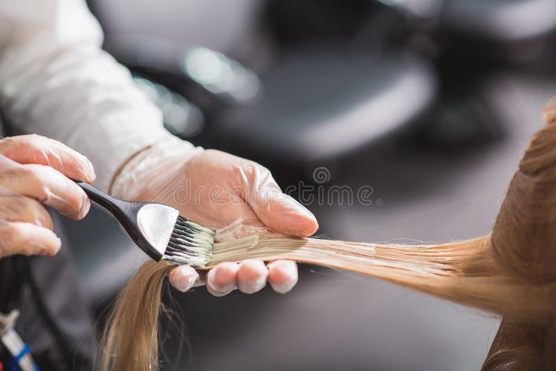 Mężczyzna w rękawiczkach jest barwiarskim włosy obrazy royalty free