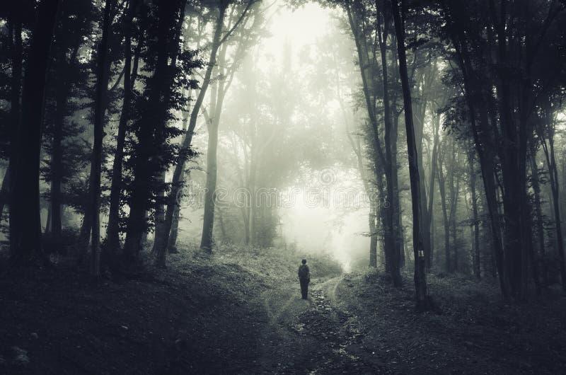 Mężczyzna w strasznym ciemnym lesie z mgłą na Halloween fotografia royalty free