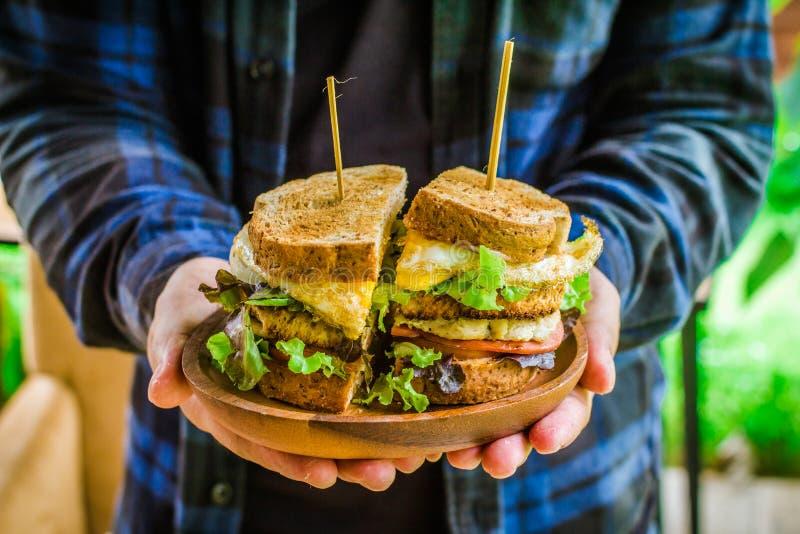 Mężczyzna w szkockiej kraty koszula błękitnym i czarnym mienie kanapki warzywie, sałatka zdjęcia stock