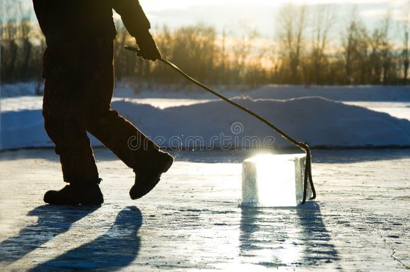 Mężczyzna wlec wielkiego blok piłujący rzeka lód pracownicy minują wielkich sześciany naturalny rzeka lód obraz royalty free
