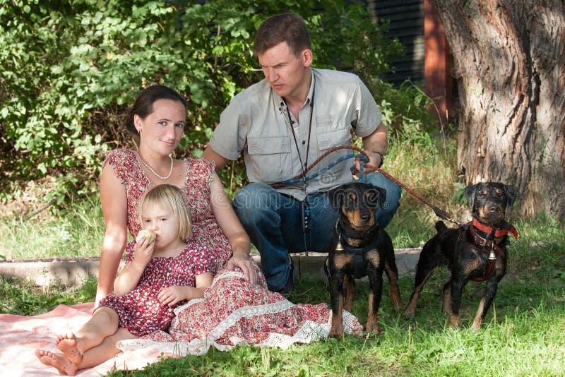 Mężczyzna z dwa psami ochrania kobiety z dzieckiem zdjęcie royalty free