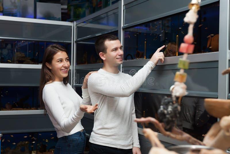 Mężczyzna z dziewczyną wybiera tropikalnej ryba w akwarium zbiorniku zdjęcie stock