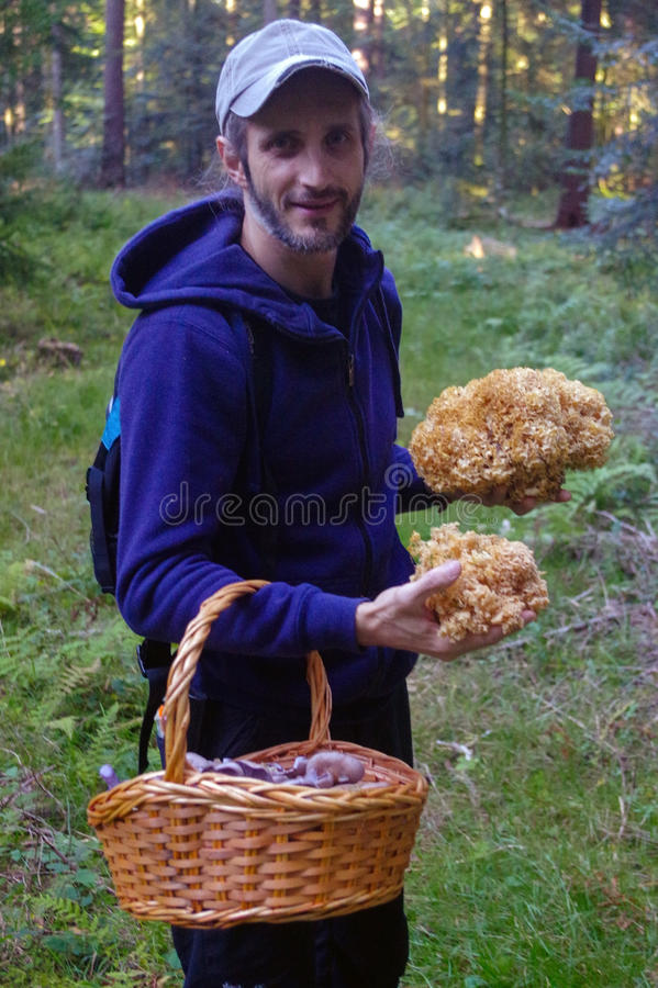 Mężczyzna z koszem trzyma pieczarki w ręce obraz royalty free