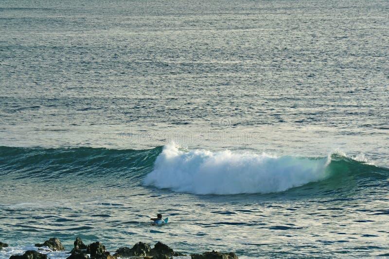 Mężczyzny dopłynięcie na surfboard dla łapać macha na oceanie spokojnym, Hanga Roa, Wielkanocna wyspa, Chile obraz royalty free