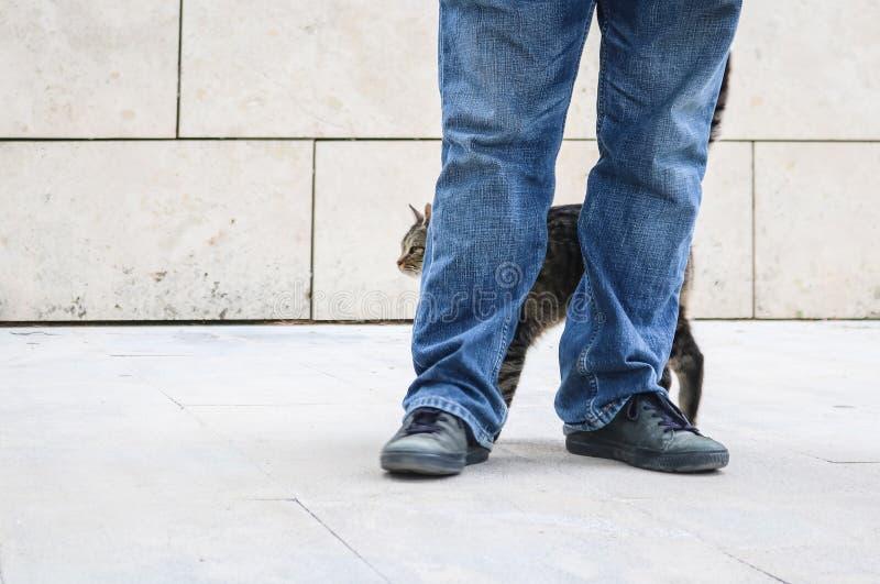 Mężczyzny lub chłopiec pozycja na outdoors bielu płytce z marmuru bloku ścianą w za niebieskimi dżinsami z kota nacieraniem przec zdjęcie royalty free