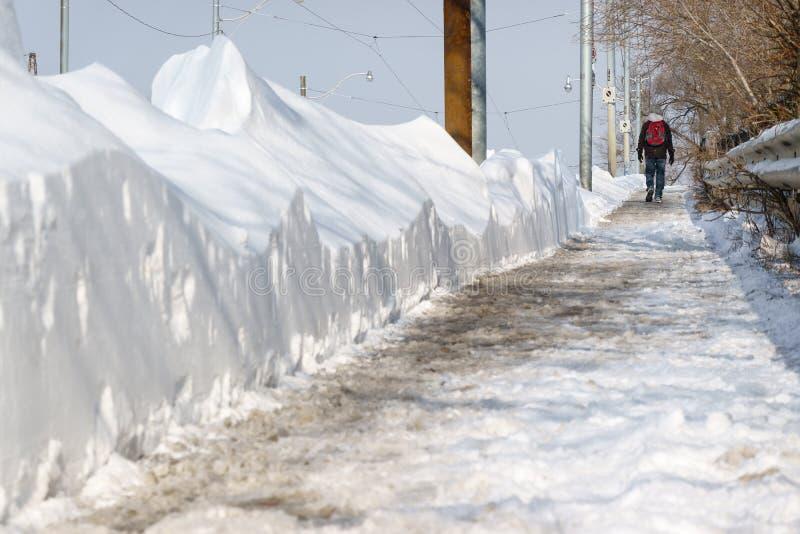 Mężczyzny odprowadzenie Podąża Dokumentacyjnego opad śniegu, Toronto, Ontario zdjęcie stock