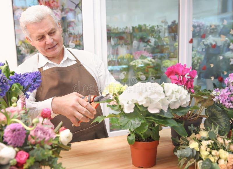 Męska kwiaciarnia bierze opiekę kwiaty obraz royalty free