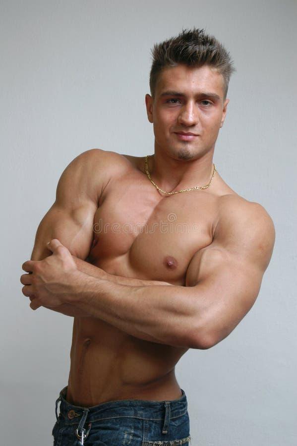 męska mięśni torsu fotografia stock