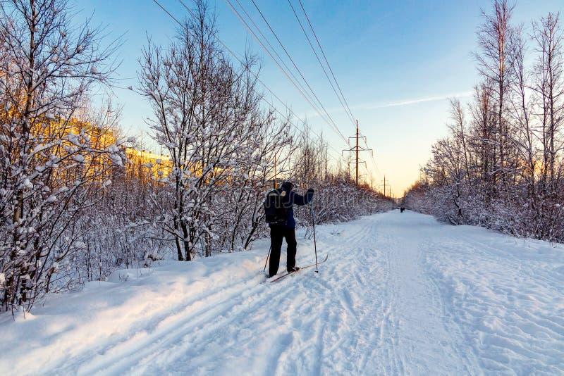 Męska narciarka jedzie w zima parku przy zmierzchem obraz royalty free