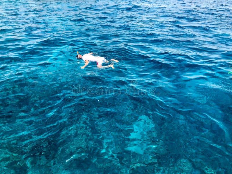Męska pływaczka w białej koszulce, skrótach i masce, akwalungu pikowania widowiska z oddychanie tubką unosi się na wodnych ` s sm zdjęcia stock