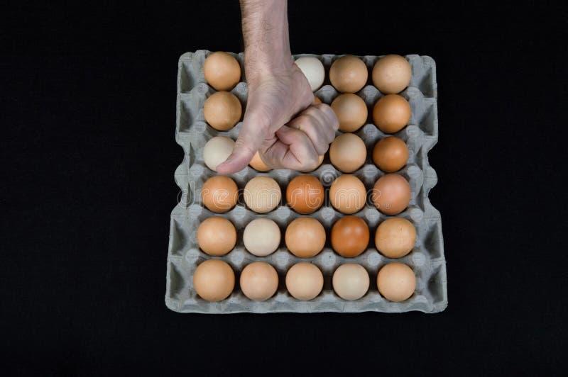 Męska ręka pokazuje kciuk nad w górę kartonu pudełka kurni jajka na czerni maty tle pełno fotografia stock