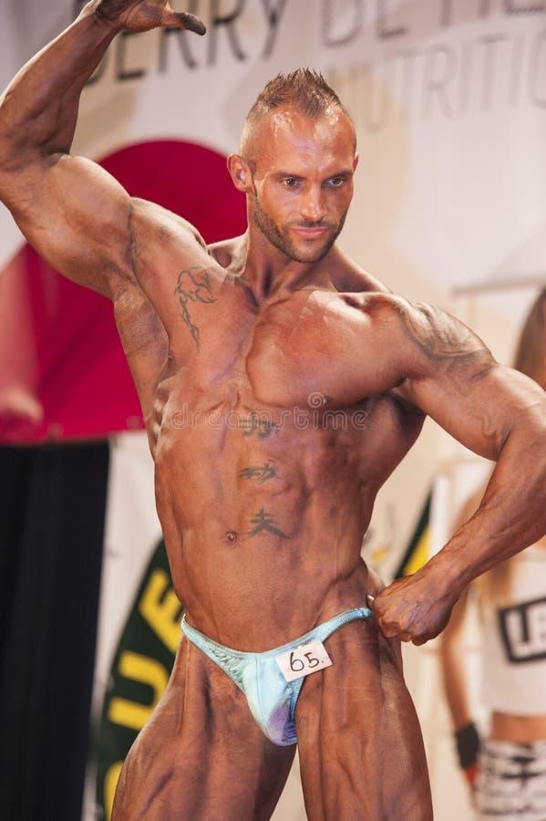 Męski bodybuilder pokazuje jego mięśniowego ciało na scenie fotografia royalty free