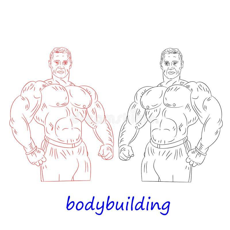 Męski bodybuilder rysunek w ołówkowej czerwieni i czerni, sylwetka o ilustracji