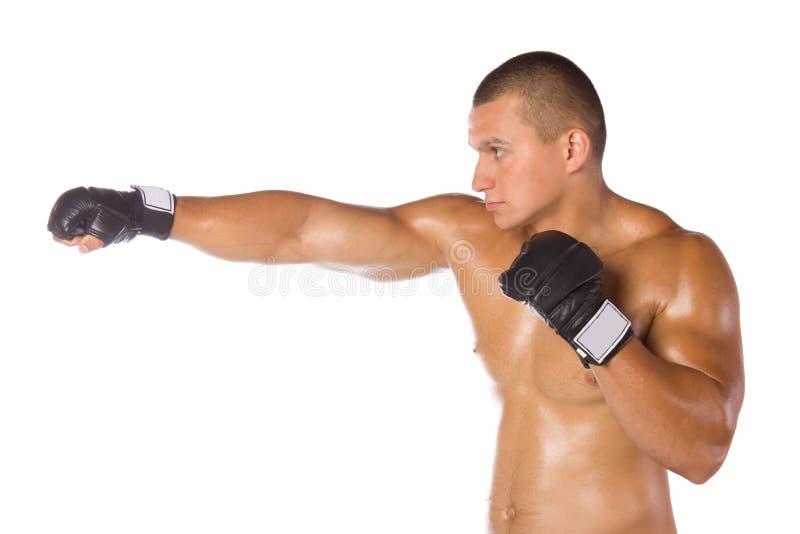 Męski bokser, wojownik. Sporty. obraz royalty free