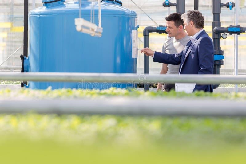 Męski botanik i biznesmen dyskutuje nad składowym zbiornikiem w szklarni fotografia royalty free