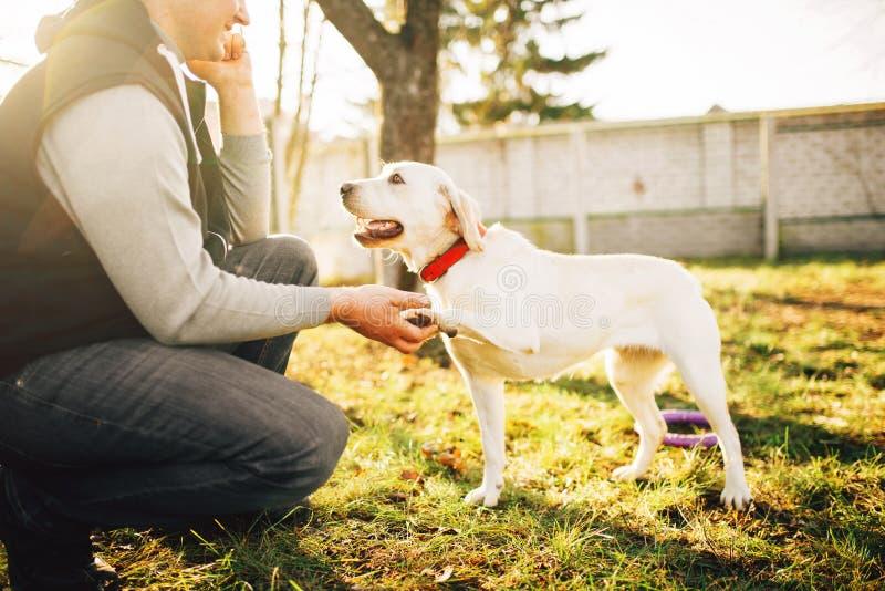Męski cynologist z wyszkolonym pracującym psem fotografia royalty free