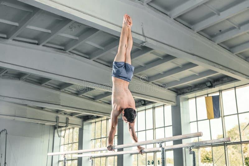 Męski gimnastyczki spełniania handstand na równoległych barach zdjęcie royalty free