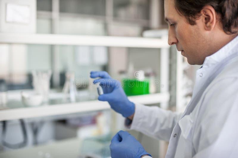 Męski lab technik trzyma próbnej tubki z próbką fotografia royalty free
