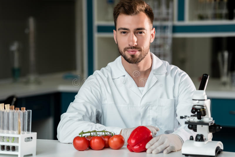 Męski naukowiec pracuje z warzywami i patrzeje kamerę w laboratorium obraz royalty free