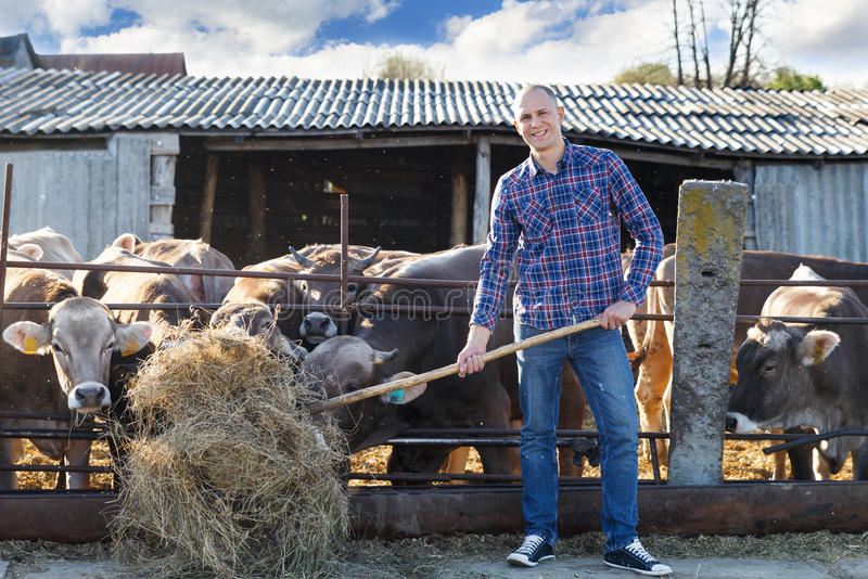 Męski ranczer w gospodarstwie rolnym zdjęcie stock