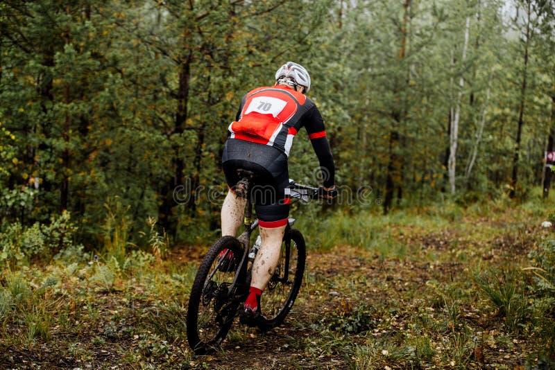 Męskiej atlety w średnim wieku przejażdżki w lesie na bicyklu fotografia royalty free