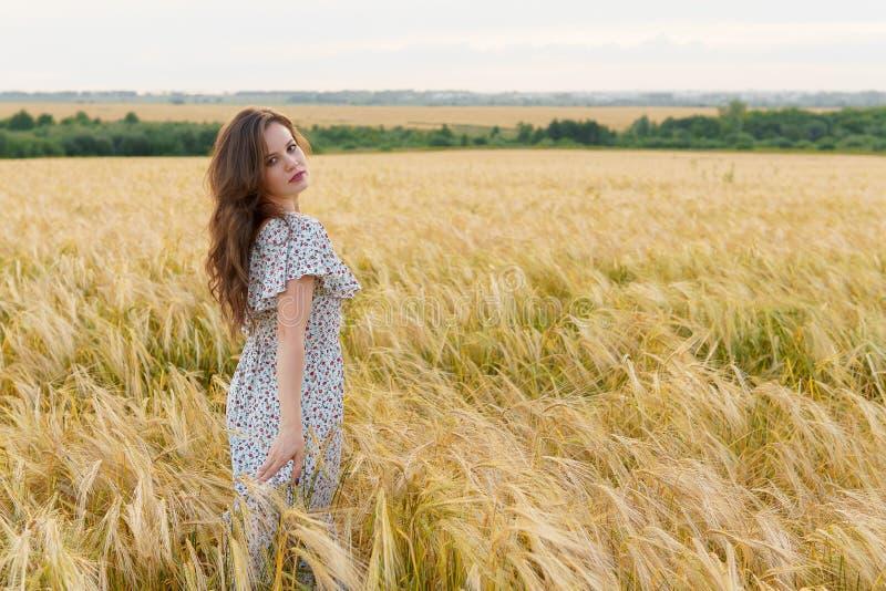 Młoda ładna kobieta w sukni pozach na pszenicznym polu obrazy stock