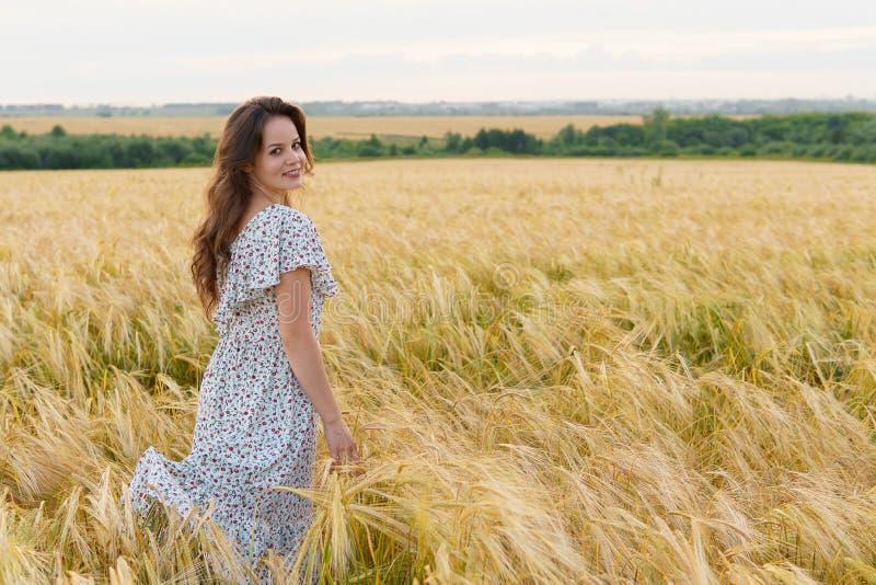 Młoda ładna kobieta w sukni pozach na pszenicznym polu obraz royalty free