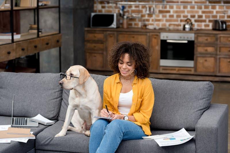 młoda amerykanin afrykańskiego pochodzenia kobieta pracuje w domu na leżance podczas gdy jej psi obsiadanie beside obrazy royalty free