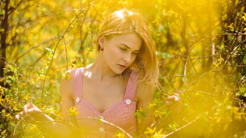 Młoda blond rozważna kobieta ubierał w różowej smokingowej pozyci blisko żółtego kwitnącego drzewa obrazy stock