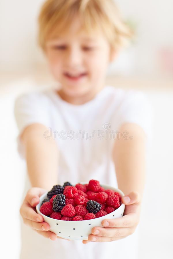 Młoda chłopiec, dzieciak trzyma talerza malinki i czernicy świeże i dojrzałe zdjęcie stock
