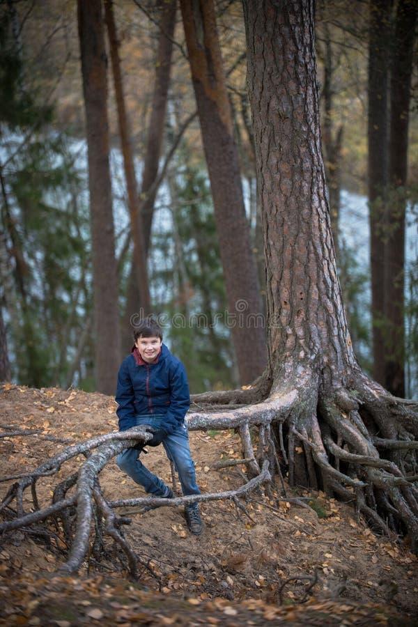 Młoda chłopiec pozuje w jesieni lasowym obsiadaniu na możnych korzeniach antyczny drzewo zdjęcie royalty free