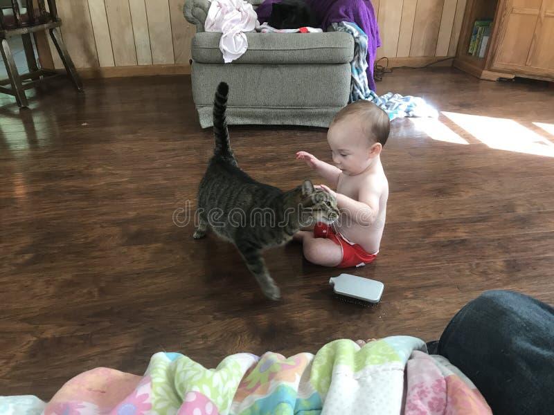 Młoda chłopiec z kotem w pokoju dziennym obraz royalty free