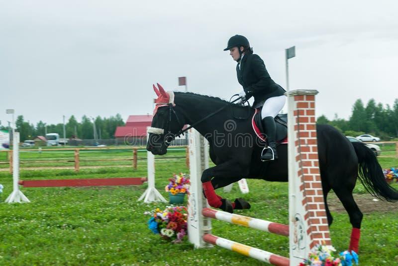 Młoda dziewczyna jeździec na koniu pokonuje przeszkody zdjęcia stock