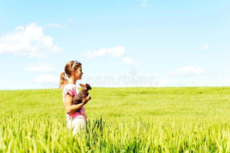 Młoda dziewczyna kontempluje naturę w pszenicznego pola mienia psie obraz royalty free