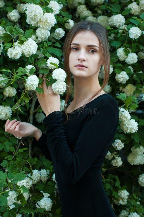 Młoda dziewczyna na tle kwitnąć białego viburnum obrazy stock