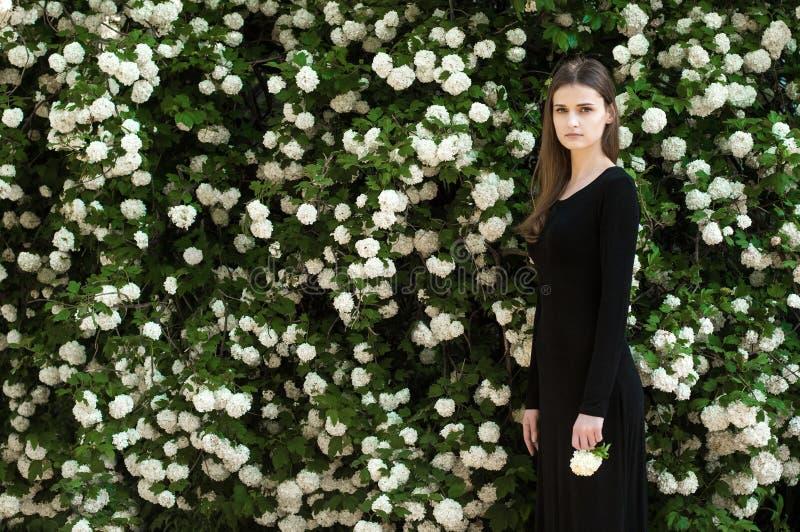 Młoda dziewczyna na tle kwitnąć białego viburnum zdjęcia royalty free