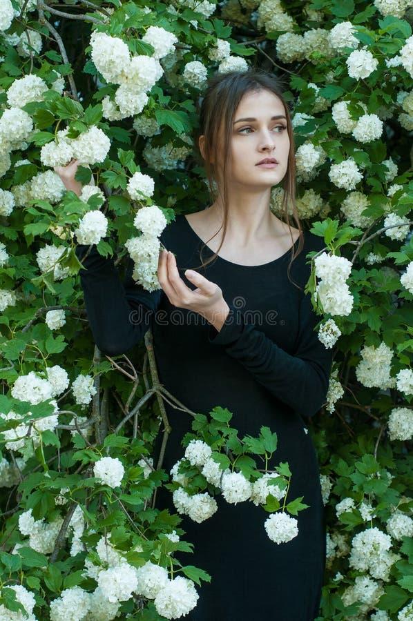 Młoda dziewczyna na tle kwitnąć białego viburnum w wiosna sezonie zdjęcie stock