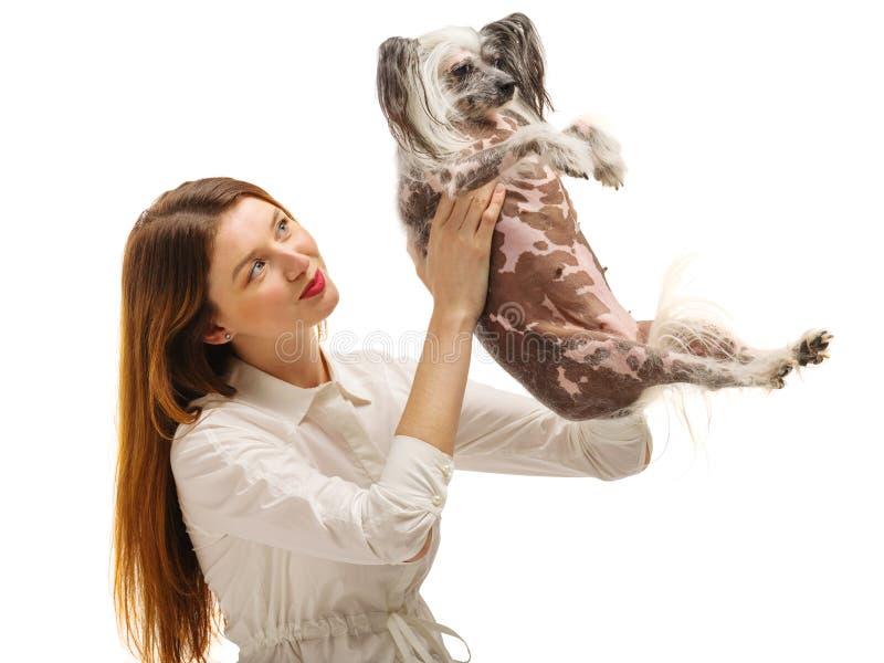 Młoda dziewczyna trzyma śmiesznego Chińskiego Czubatego psa i podrzuca je up pojedynczy białe tło _ obrazy royalty free
