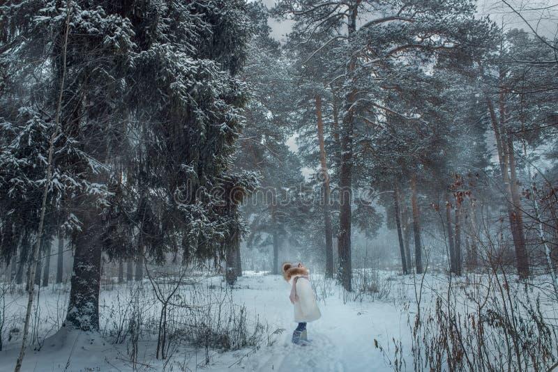 Młoda dziewczyna w śnieżnym lesie obraz royalty free