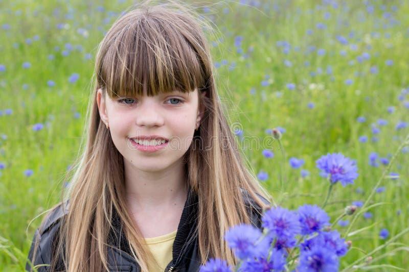 Młoda dziewczyna w chabrowym polu obraz stock