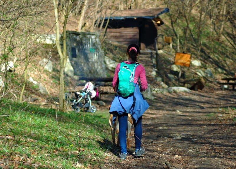 Młoda dziewczyna wycieczkuje w lesie z dziecko powozikiem w tle zdjęcia royalty free