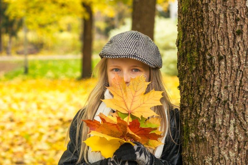 Młoda dziewczyna z jesień liśćmi klonowymi w parku zdjęcia stock