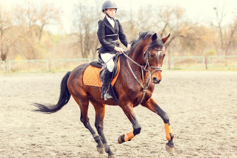 Młoda jeździec dziewczyna przed skakać na przedstawienia doskakiwaniu zdjęcie stock