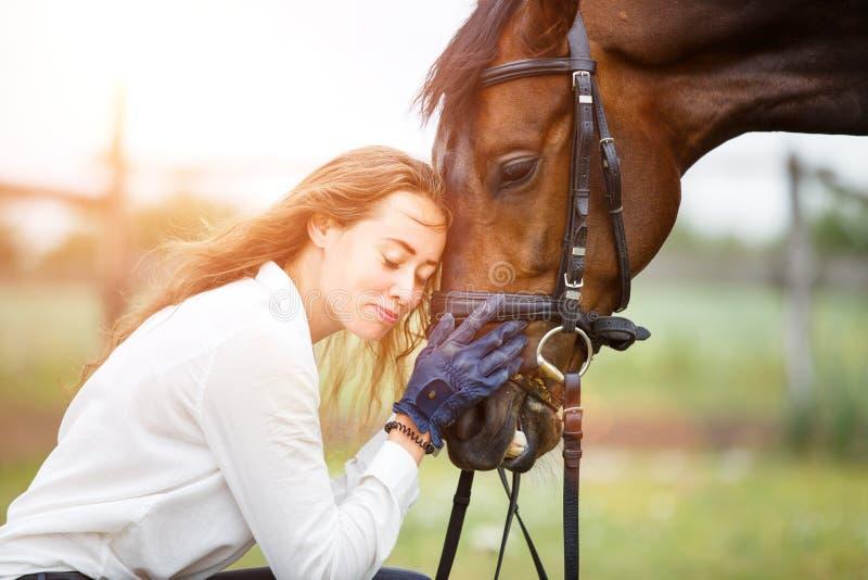 Młoda jeździec kobieta w koszulowy opierać końska głowa zdjęcia stock