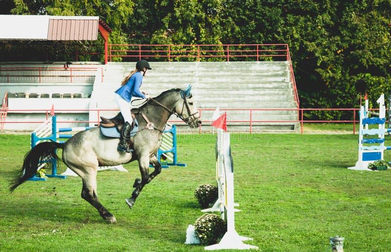 Młoda kobieta dżokeja przejażdżki piękny biały koń i skok nad crotch w equestrian sporcie obraz royalty free